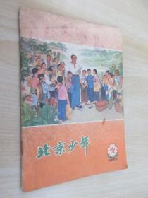 北京少年  1975年第12期