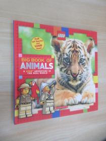 Big Book of Animals (LEGO Nonfiction)  精装