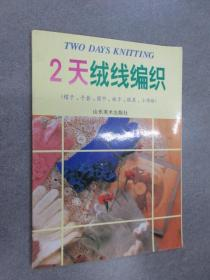 2天绒线编织:帽子、手套、围巾、袜子、披肩、小饰物