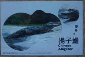 香港2010年动物航空邮资片新片 扬子鳄m80