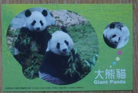 香港2010年大熊猫航空邮资片新片m80