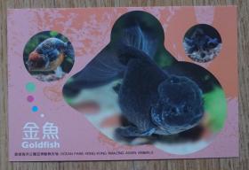 香港2010年动物航空邮资片新片 金鱼m80