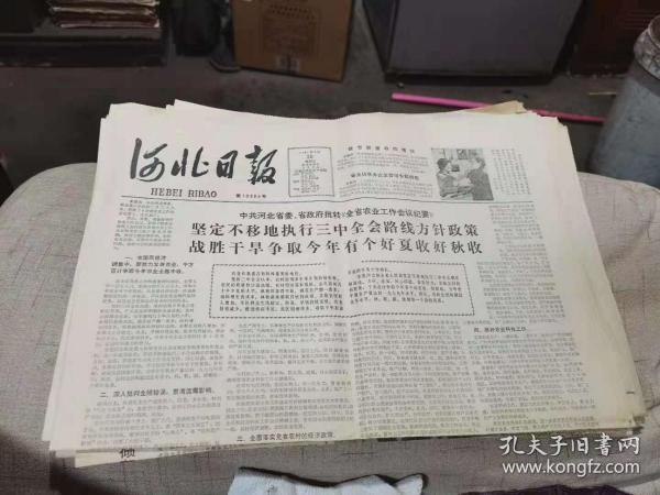 原版老报纸:河北日报1981年3月20日