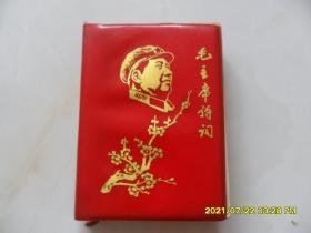 毛主席诗词(有林彪油画年画)梅花毛像红塑皮(少见新芜湖报)社版)