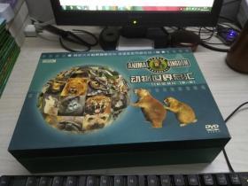 动物世界总汇——终极收藏版第一部(DVD 76片装)