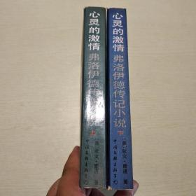 心灵的激情:弗洛伊德传记小说 (上下册)