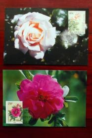MC-31(花卉)中国新西兰联合发行邮票极限片 一套2枚 集邮总公司