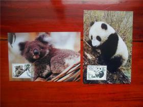 MC-23 熊猫和考拉 邮票(中澳联合发行)极限片集邮总公司