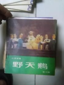 野天鹅(彩色,第四集)