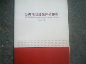 公共项目绩效评价研究