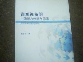 微观视角的中国智力外流与回流