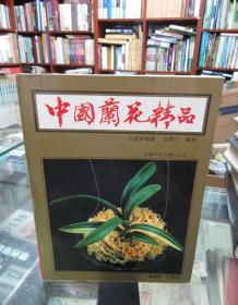 中国兰花精品——投资与栽培