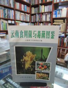 云南食用菌与毒菌图鉴 一版一印