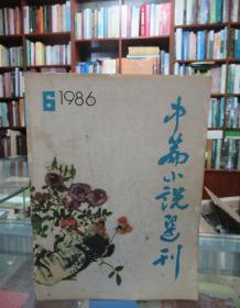 中篇小说选刊1986 6