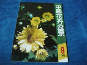 中國花卉盆景(1991年9期)