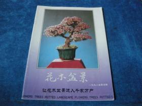 花木盆景1992年第5期.