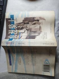 浪漫骑士-记忆王小波