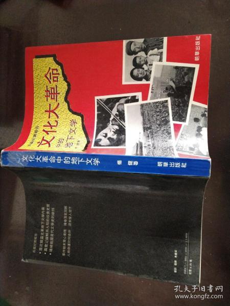 文化大革命中的地下文学