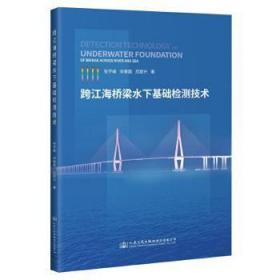 跨江海桥梁水下基础检测技术9787114171024中国海关书店