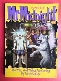 Mr Midnight 英文原版 神秘先生25