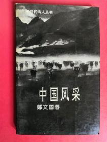 当代诗人丛书:中国风采
