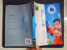 张之路品藏书系:足球大侠