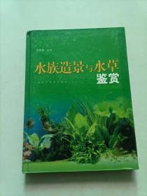 水族造景与水草鉴赏