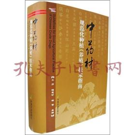 《法音》杂志【合订本】 (1981-2000年)17册合售