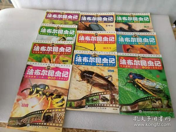 全球首都实物拍摄儿童版 法布尔昆虫记 (10本合售)