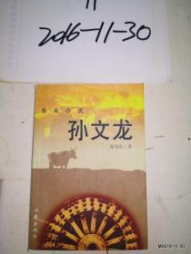 孙文龙 长篇小说