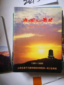 灿烂的前程 山西省桑干河杨树丰产实验局一期工程专辑
