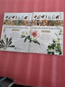 中国中草药图典(上下册)