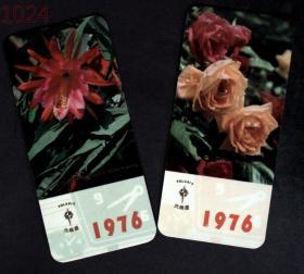 日历、年历,中国轻工业品进出口公司山东省分公司1976年年历卡2枚·令箭荷花月季