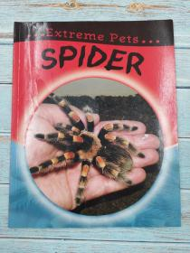 Spider (Extreme Pets)