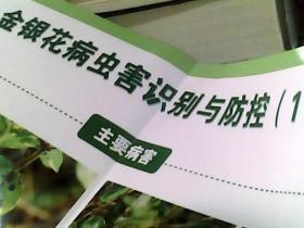 金银花病虫害识别与防控(一)