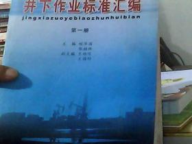 井下作业标准汇编 第一册
