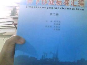 井下作业标准汇编  第二册