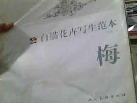 梅-白描花卉写生范本