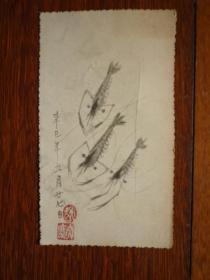 辛巳年 手工画 虾(有盖章 相当可以的画 名字识者自鉴)