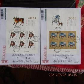 2021-1 生肖牛 邮票小版张 原地台安达牛挂号回执首日实寄封2枚全