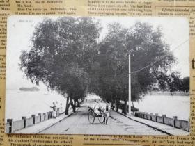 民国邮政明信片:西湖白堤
