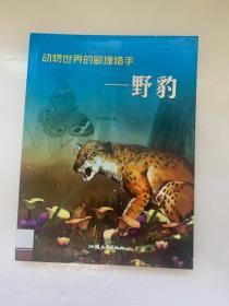 动物世界的敏捷猎手——野豹