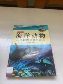 海洋动物 : 怪趣的地球生命