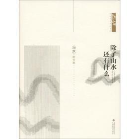 除了山水 还有什么冯艺广西民族出版社文学