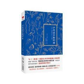 全新正版图书 少年迈尔斯的海吉姆·林奇北京联合出版公司9787550265035只售正版图书