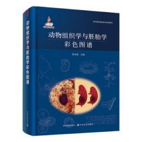 全新正版图书 动物组织学与胚胎学彩色图谱者_彭克美责_肖邦中国农业出版社9787109281929 动物组织学图谱动物胚胎学图谱本科及以上只售正版图书