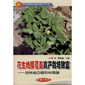 花生地膜覆盖高产栽培致富:吉林省白城市林海镇