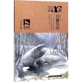 中国当代儿童文学小说十家 巨蜥母亲