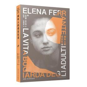 成年人的谎言生活 外国现当代文学 意大利埃莱娜·费兰特