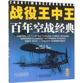 战役王中王 百年空战经典